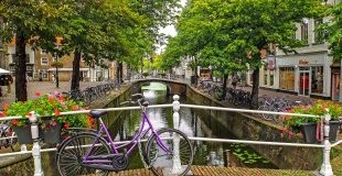 Амстердам - в страната на лалетата