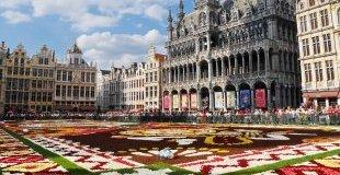 Брюксел - Килим от цветя, със самолет и обслужване на български език